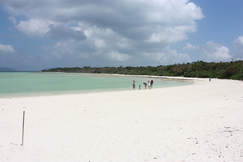 コンドイ浜、海