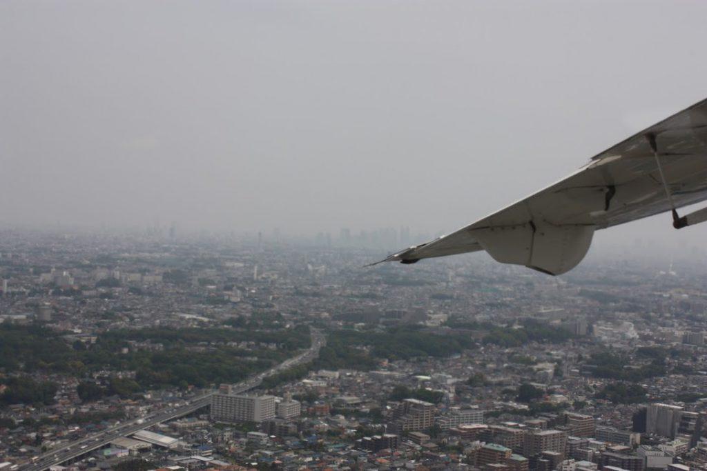 翼の奥に新宿を臨む